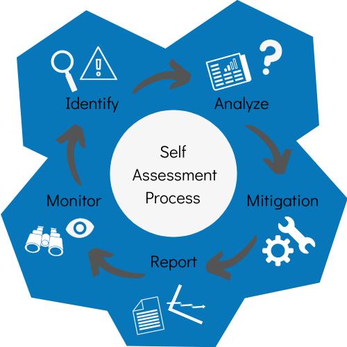 Self-Assessment process